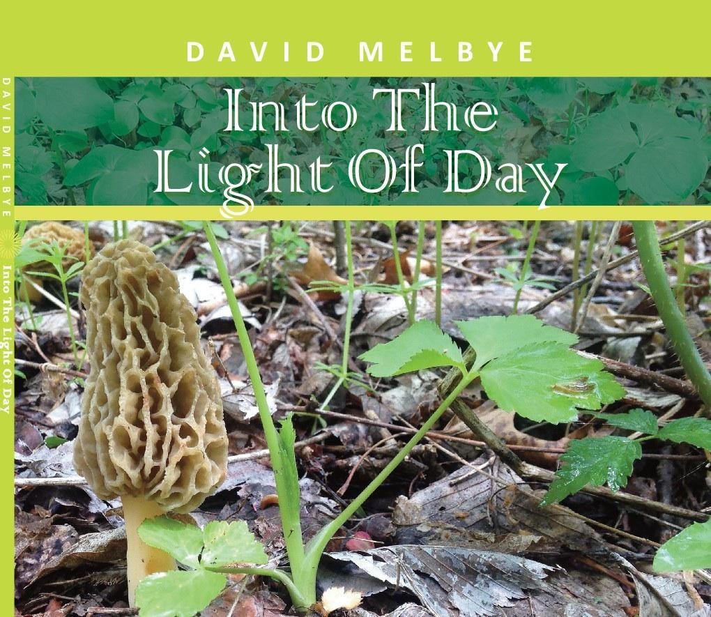 Melbye CD Cover